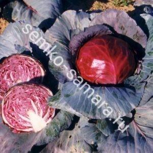 Капуста краснокочанная Примеро F1 семена