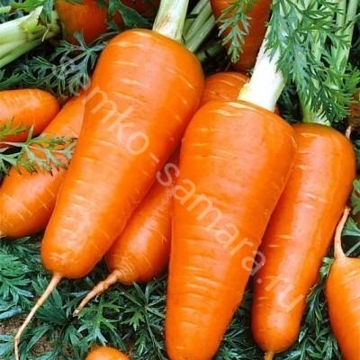 Морковь Ред Кор F1