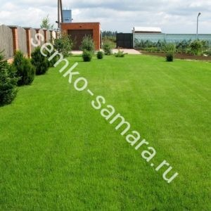 Газонная трава Солнечная поляна