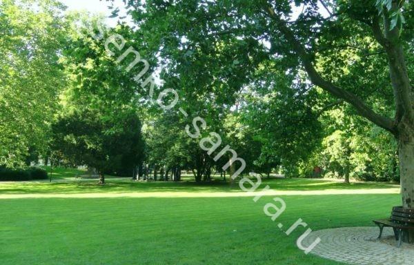 Травосмесь Парк