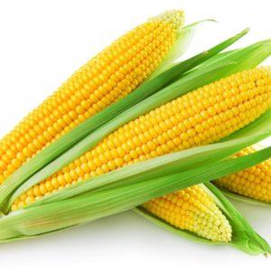 Кукуруза VITA GREEN