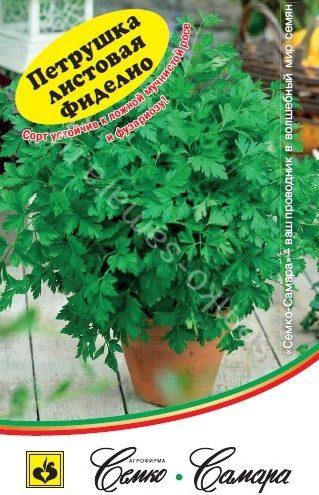 Петрушка листовая Фиделио (второе поколение)